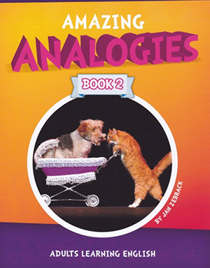 Analogies for Adults Book 2